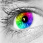 Removing Barriers to Accessibility for Color Blind Voters